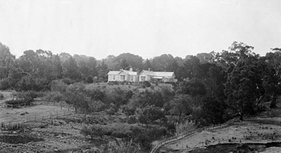1900, homestead.jpg