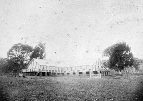 1900 woolshed.jpg