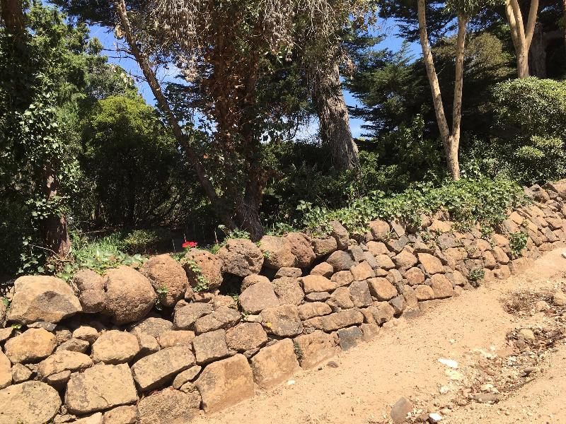Greystones garden wall 2019.jpg