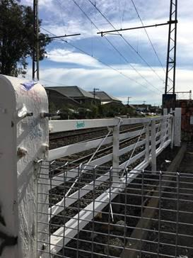Tinning St gates.jpg