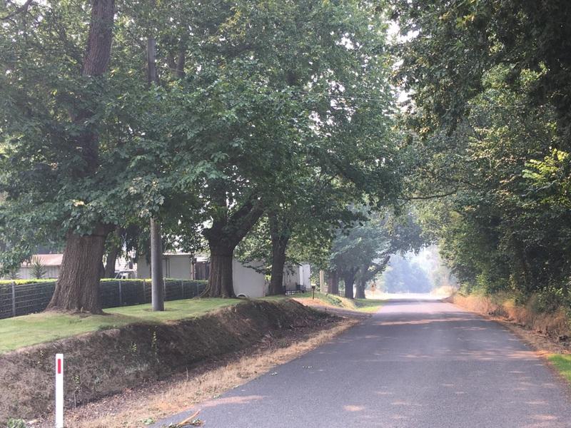 Kardella Avenue of Honour